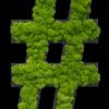 """Piktogram """"#"""" z Islandského mechu"""