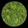 Mechový obraz (kruh) z kopečkového mechu 34