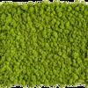 Mechový obraz z Islandského mechu 140x40