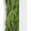 Mechový obraz z kopečkového mechu 140x40