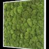 Mechový obraz z kopečkového mechu 80x80