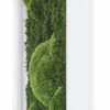 Mechový obraz z kopečkového mechu s lesním mechem 140x40