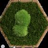 Nástěnná šestihranná dlaždice s kopečky v lesním mechu sada 9 ks