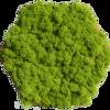 Nástěnná šestihranná dlaždice z Islandského mechu sada 9 ks