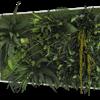 Rostlinný obraz Džungle 100x60