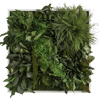 Rostlinný obraz Džungle 55x55