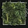 Rostlinný obraz Džungle 80x80