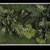 Rostlinný obraz Ostrovy 100x60