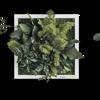 Rostlinný obraz Ostrovy 22x22 sada 3ks