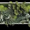 Rostlinný obraz Ostrovy 57x27