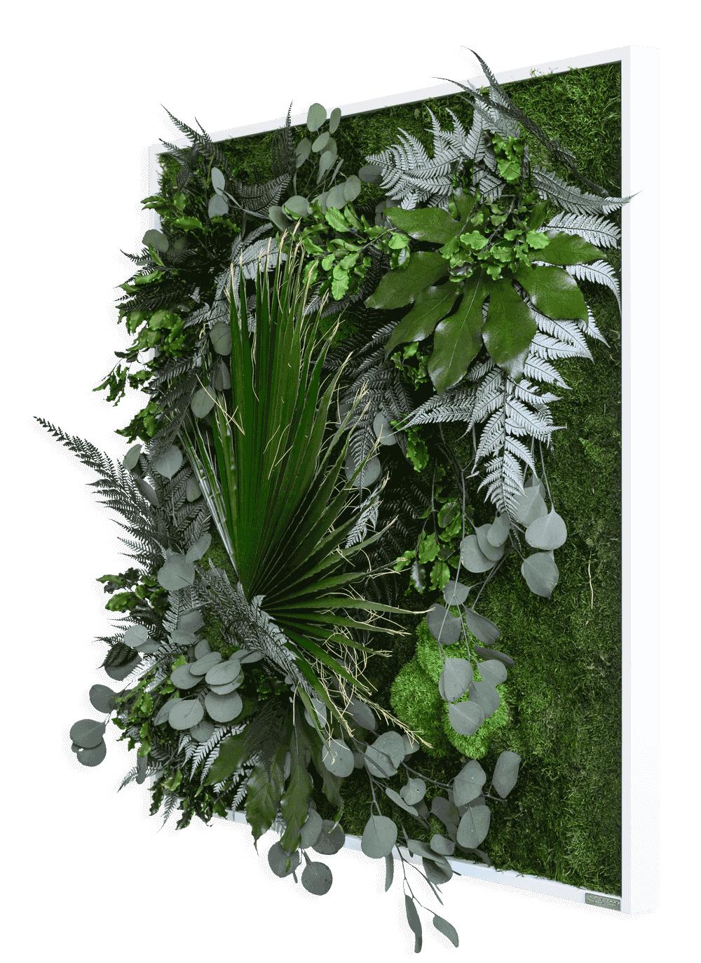 Rostlinný obraz s designem Džungle 80x80