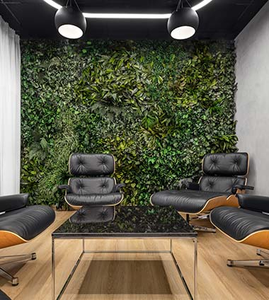 Rostlinné stěny