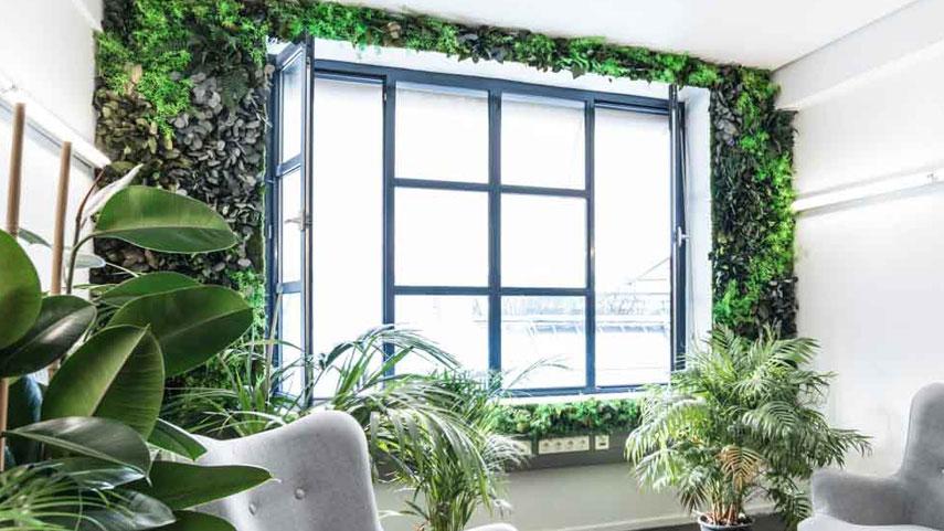 Stěna džungle v okně