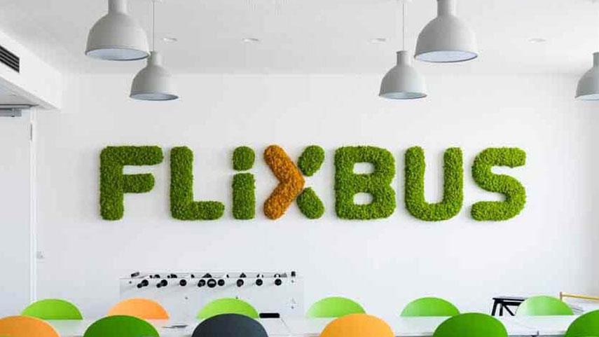FLIXBUS logo z islandského/sobího mechu