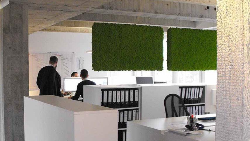 Islandský/sobí mech jako panely pro zlepšení akustických podmínek v kanceláři