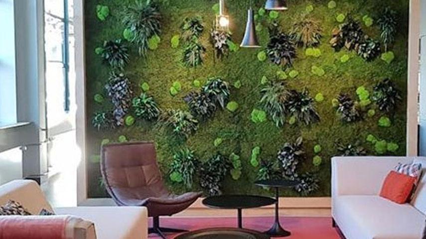 Zelená stěna v zasedací místnosti z mechů a rostlin