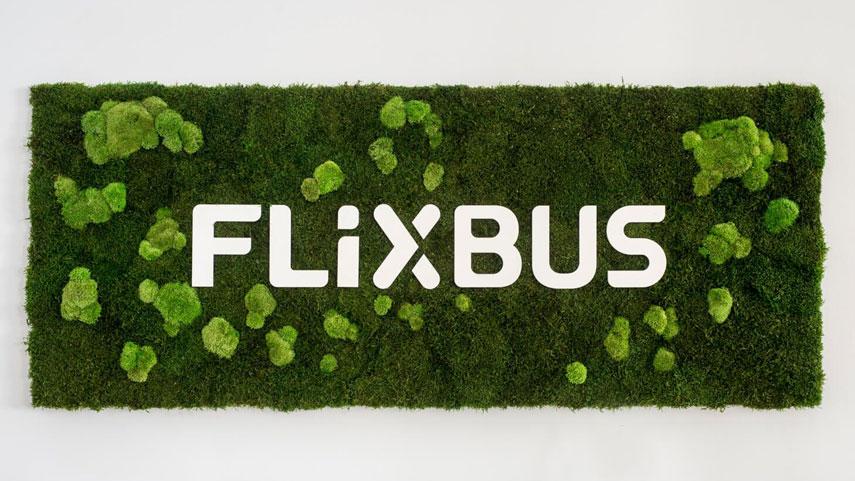 FLIXBUS logo z kopečkového a lesního mechu