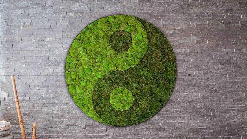 JIN JANG symbol z kopečkového a lesního mechu ve wellness centru